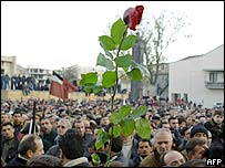 Protester with rose