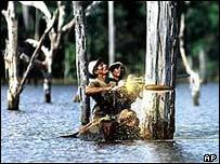 Tala de �rboles en el Amazonas