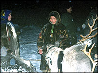 Nenets people and their reindeer on the edge of the tundra
