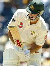 Steve Waugh is struck after being at the crease for just two balls