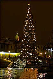 Árbol de Navidad en la plaza de Trafalgar.