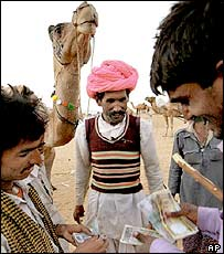 Camel-trading in Rajasthan
