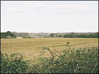 Agricultural field in Suffolk