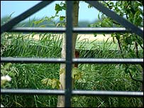 Farm gate - freefoto