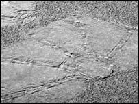 Imprint, Nasa