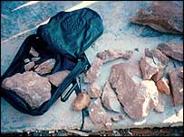 Fragments of dinosaur eggs     Buck
