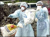 Trabajadores tailandeses arrojan sacos con deshechos