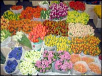Trader's flower stall, New Covent Garden Market
