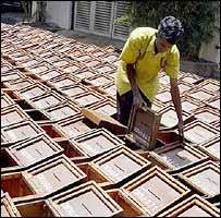 Sri Lanka poll boxes are prepared