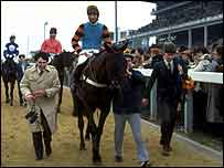 Burrough Hill Lad is led in after his 1984 Gold Cup triumph