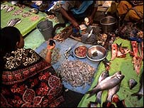 Fish market, Calcutta