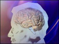 Brain, BBC