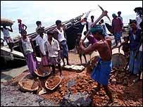 Bangladeshi villagers dig up bricks to rebuild houses   Jim Loring/Tearfund
