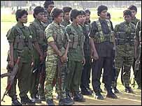 Tamil Tigers in eastern Sri Lanka. Photo by Sriyantha Walpola