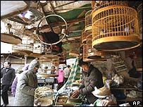 A bird vendor surrounded by empty cages in a Beijing market