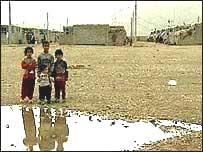 Marshland Iraq