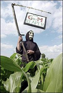 GM campaigner