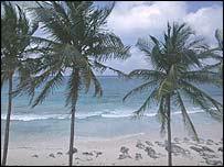 A Bahamas beach scene