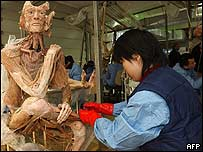 The Von Hagens Plastination factory in Dalian north-east China