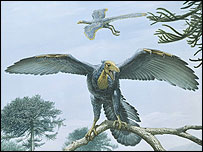 Artists impression of Archaeopteryx