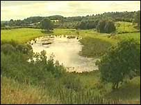 Fardum Turlough, County Fermanagh