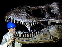 Natural History Museum engineer John Phillips working on the head of the T-Rex dinosaur model