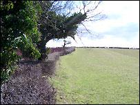 Grassland of the Cwm Slade Valley