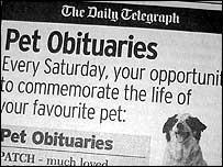 Telegraph ad