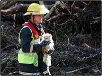 A firefighter rescues a cat after the flash floods in the village of Boscastle