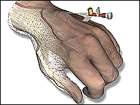 The virtual reality hand
