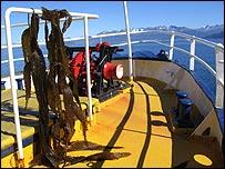 Algas en una embarcación, Ushuaia, Argentina. Foto: Manuel Toledo.