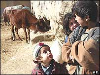 Afghan farmers' children chat near a cow