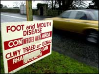 Foot-and-mouth warning sign