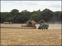 Harvesting crops on Manydown farm