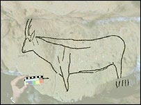 Cave art depicting an ibex