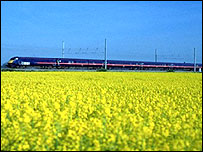 Train passing field of flowers