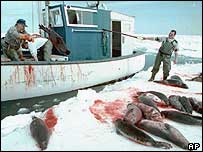 Archive picture of Canadian seal hunters