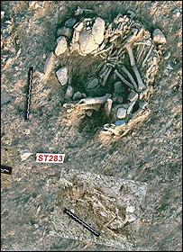 Excavación donde se encontraron los fósiles.