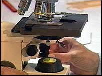 Image of a microscope