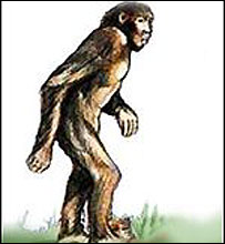 Artists impression of Orang Pendek