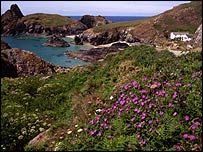 Kynance Cove. Picture courtesy of National Trust / Simon Cook