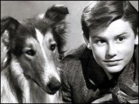 Lassie and actor Roddy McDowell from the film Lassie Come Home