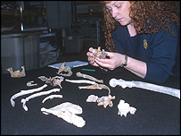 Sue Black with the remains of