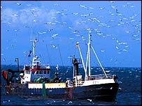 Danish sandeel trawler   Chris Gomersall/rspb-images.com