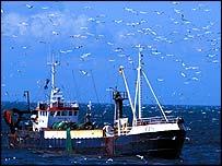 Danish sandeel trawler   Chris Gomersall/rspb-images.com