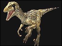 Utahraptor, BBC
