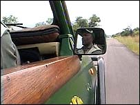 The driver of a safari vehicle