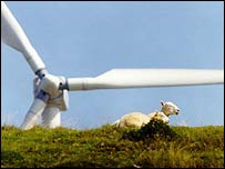 Sheep sit in front of a wind turbine