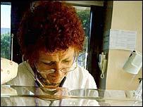 Professor Kate Costeloe