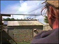 Paul Carter with choughs